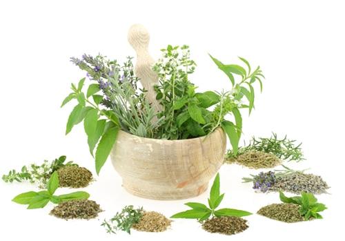 přírodní bylinné složení na prostatu